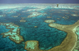 Help is on the way for the Great Barrier Reef