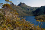 Cradle Mountain. Photo: Steve Johnson