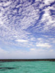 Shark Bay sky. Photo: Nicola Bryden