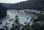 Halvorsen hire boats and private boats on Hawkesbury River. Photo: William prince collection
